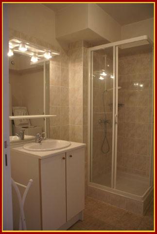 salle-de-bain_pluvier_20180205_1818499558